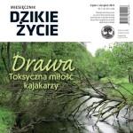 Miesiecznik-Dzikie-Zycie-okladka-lipiec-sierpien-2015-mini