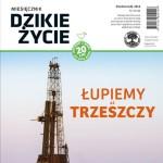 Miesiecznik-Dzikie-Zycie-okladka-pazdziernik-2014-kwadrat
