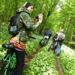 W drodze do powierzchni badawczych Stancji Geobotanicznej UW w Białowieży, gdzie naukowcy żmudnie badają skutki ocieplenia klimatu widoczne w ekosystemach leśnych Białowieskiego Parku Narodowego.